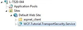IIS WCF Service application