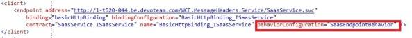 WCF Client endpoint behavior