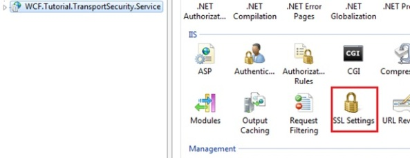 IIS SSL settings WCF service