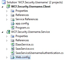 WCF Custom Username validation solution