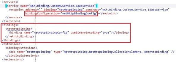 WCF custom binding custom configuration setting